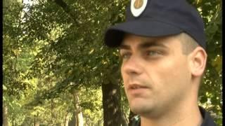 Uloga obrazovanja i nova generacija policajki u Srbiji