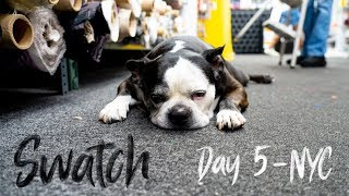 Famous Swatch from Project runway and downtown NYC - Day 5