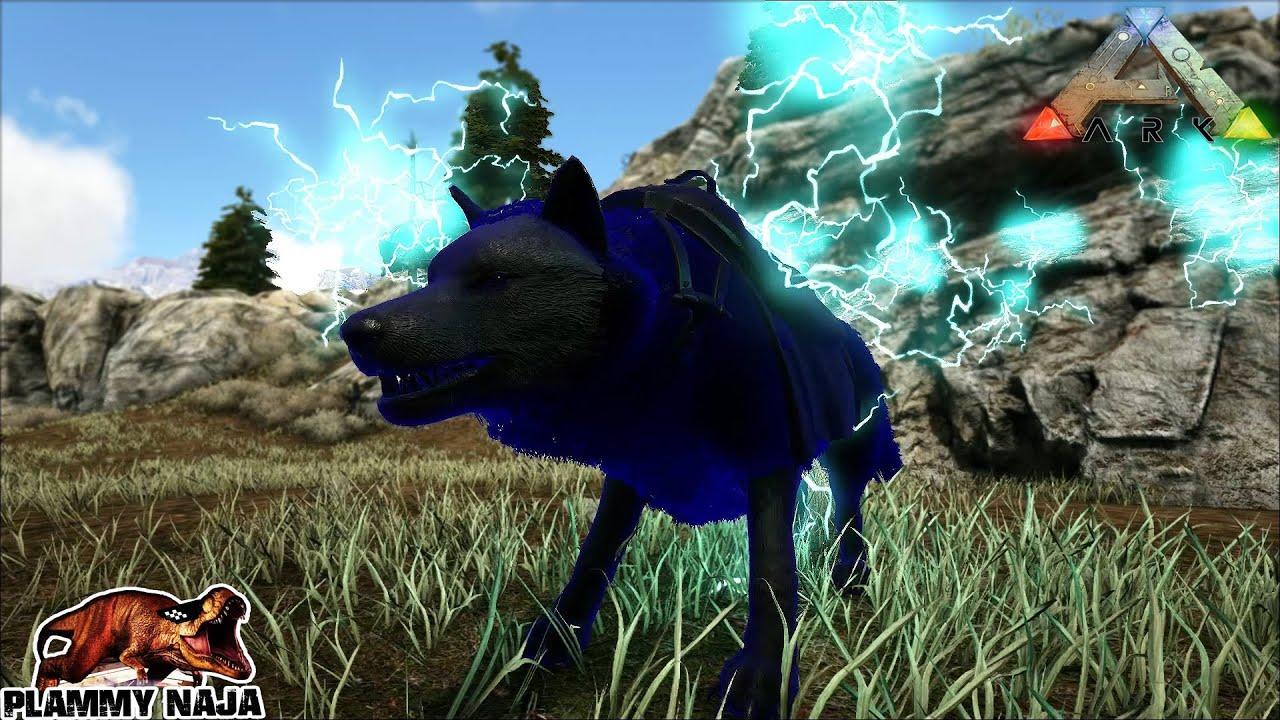ARK PC EP102 จับไลก้าหมาป่าสายฟ้ากันเถอะ[GALVANIZED WOLF]