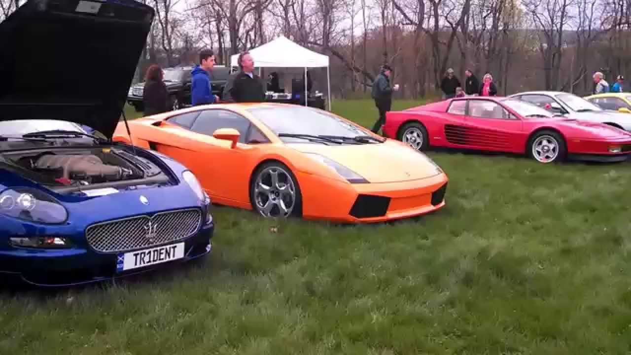 """5th Annual Exotic and Sports Car Show """"Cool Cars for Cats and ..."""