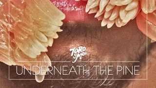 Toro y Moi  - Underneath The Pine (Full Album)
