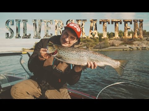 The Silver Treasure - Sea Trout