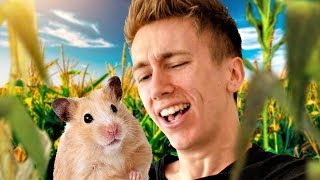 HAMSTERS EATING EACH OTHER?
