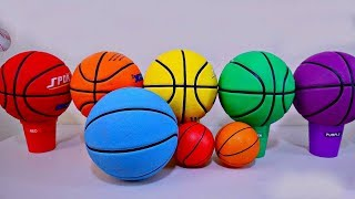 Learn with Color Sport Ball Basketball Toy for Baby and Toddlers