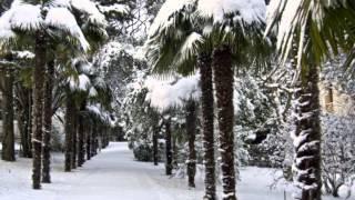 группа Кристина - Снег на розах