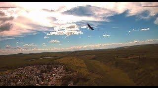MJX BUGS 8 BIG BIRD CAMERA REVIEW Brushless 5.8 ghz racing drone UAV QUADCOPTER