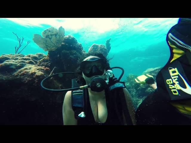 buceo en cuba  -  Playa珊瑚 - 巴拉德罗