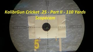 KalibrGun Cricket .25 -  Part II - 110 Yards (100m) Scopecam