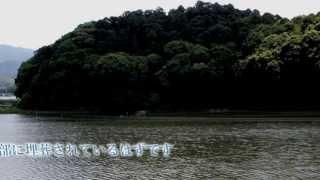 女王「卑弥呼」が眠るとも言われる奈良県桜井市の箸墓古墳に行きました...