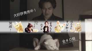 購入はこちらから⇒ http://line.me/S/sticker/1124045 映画とドラマ「猫...