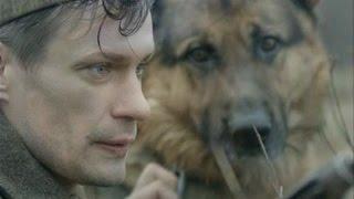 Военная  драма Пёс Рыжий 2017 фильм о животных анонс