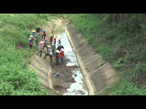 จังหวัดแพร่270858ข่าวเกษตรชาวนาเดือดไม่มีน้ำเสียหายแล้วพันกว่าไร่