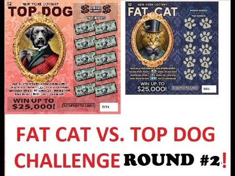 FAT CAT VS. TOP DOG CHALLENGE! ROUND #2! Lottery Bengal Scratch instant tickets
