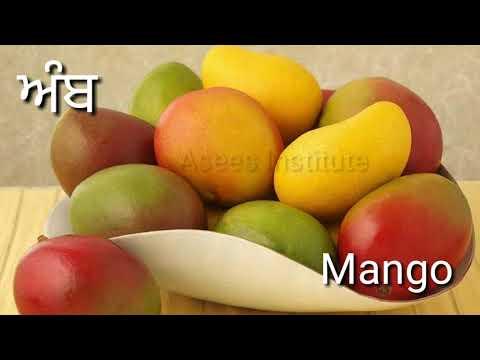 Fruits Names in english and punjabi (2019)