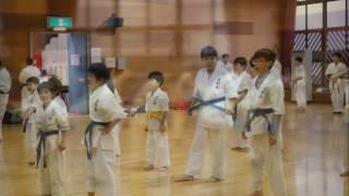 毎週日曜日に鶴見スポーツセンター、水曜日に矢向地区センターで活動を...