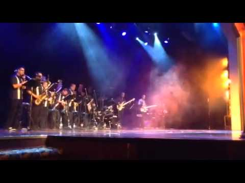 Chickens (Soul Funktion & Navigator's orchestra performance)