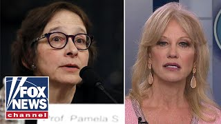 Kellyanne Conway slams Pamela Karlan: 'Who the hell are you lady'