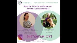 Conversaciones con Comunidad - Martina Oyarzún