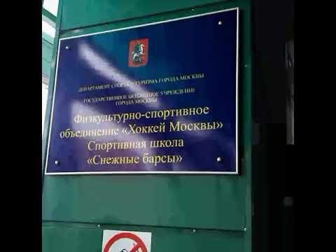 Открытая тренировка в ДЮСШ Снежные барсы
