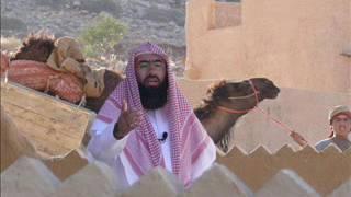 نبيل العوضي قصة هاروت وماروت