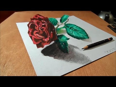 Drawing a 3D Red Rose, Amazing Optical Illusion - YouTube