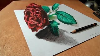3D Drawing Rose on Paper - How to draw 3d rose?  - Trick Art Illusion