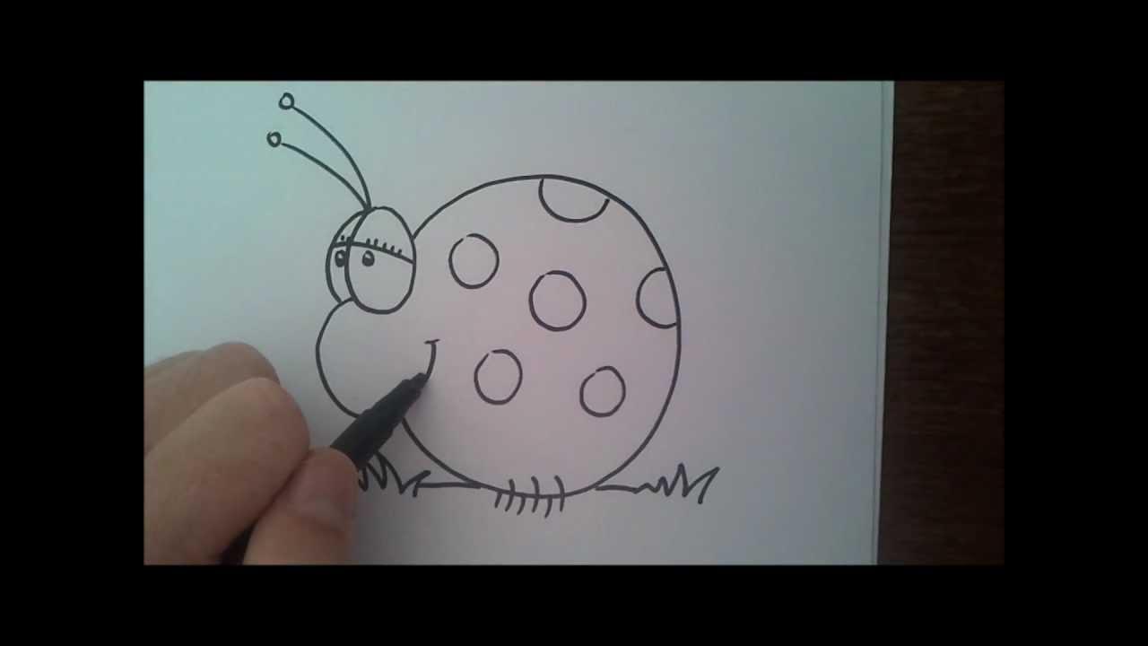 איך לצייר חיות? חיפושית בשיטת לצייר בקלות