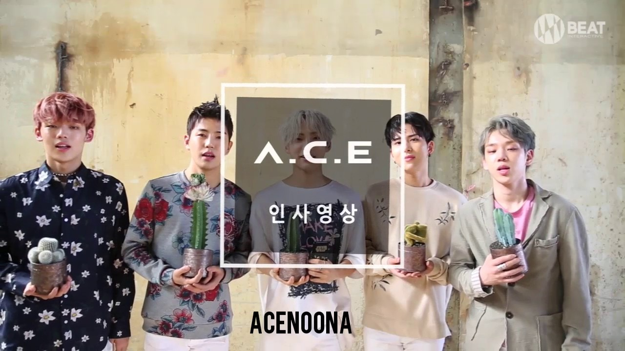 A.C.E (에이스) CACTUS | ALBUM GREETING