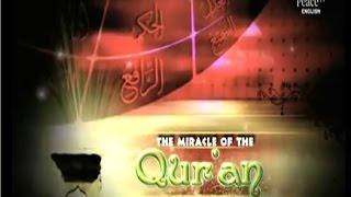 Video Miracle of the Qur'an, Yasir Qadhi, Episode 196 download MP3, 3GP, MP4, WEBM, AVI, FLV Oktober 2018