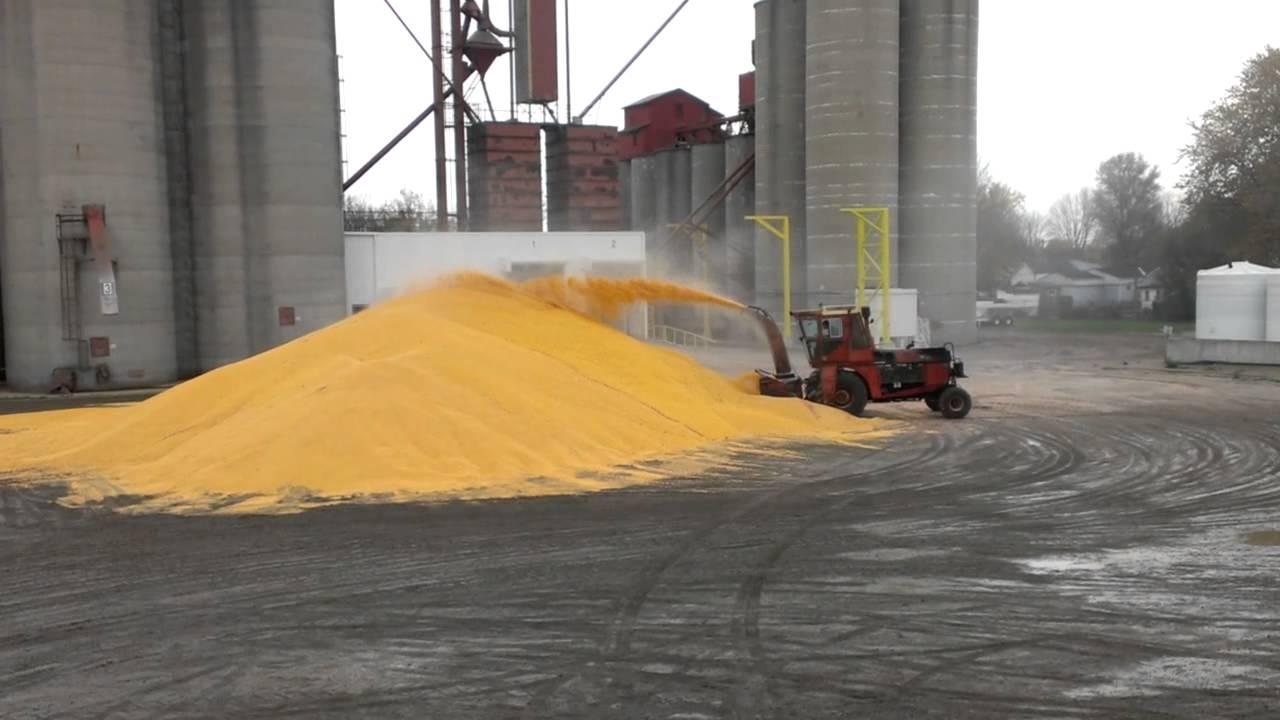 Snow Blower 24 >> Corn piling - snow blower - YouTube