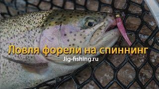 Jig-fishing.ru Ловля форели на спиннинг(Контактная информация Телефон +7 (495) 543-87-86 Мобильный +7 (929) 969-24-25, +7 (910) 5714202 Эл. почта deronkelbose@yandex.ru ..., 2016-02-22T01:54:00.000Z)