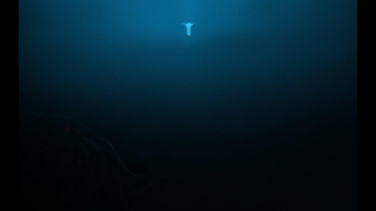 Download ABYSSES - La vie dans les profondeurs extrêmes - Documentaire HD