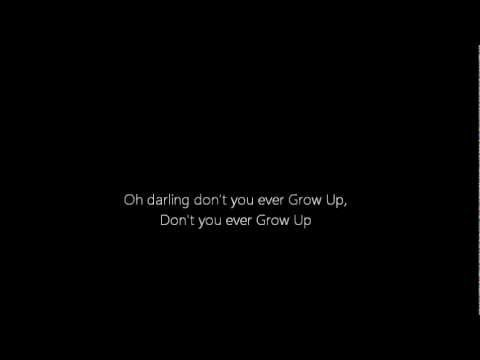 Never Grow Up - Taylor Swift (Lyrics)