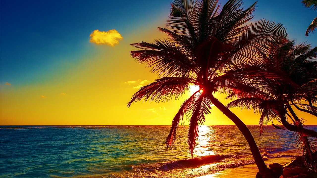"""Download Beautiful Relaxing Music, Peaceful Soothing Instrumental Music, """"Island Paradise"""" By Tim Janis"""