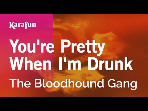 Karaoke You're Pretty When I'm Drunk - The Bloodhound Gang *