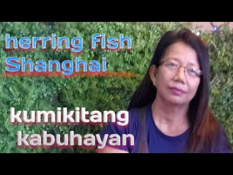 How To Make Herring  Fish Shanghai (fish Lumpia Recipe)