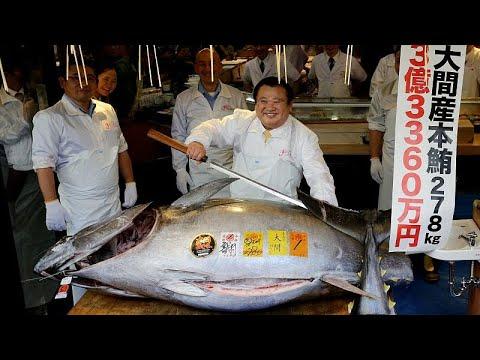 Pagaron más de u$s 3 millones por el atún rojo más caro del mundo