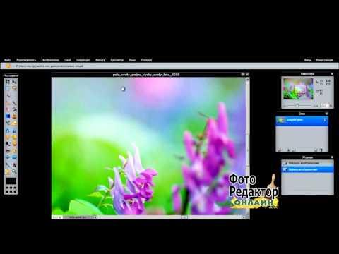 Фоторедактор онлайн Редактировать фото онлайн