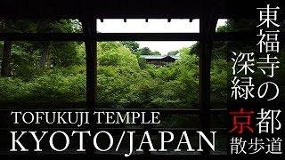 京都観光 東福寺(Tofukuji temple in Kyoto,Japan)BGMで日本旅行 / そうだ京都行こう / 京都散歩道