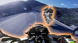 WHEELIE MIT 260KG MOTORRAD