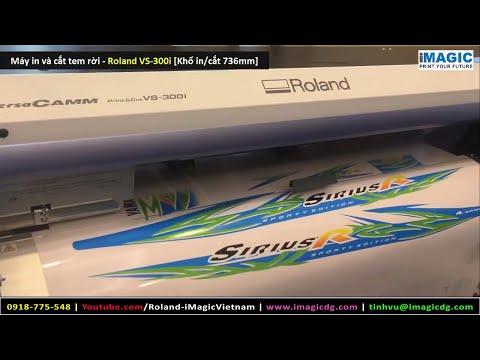 Máy in tem xe/ máy in và cắt decal tem xe Roland RF640 & VS300i