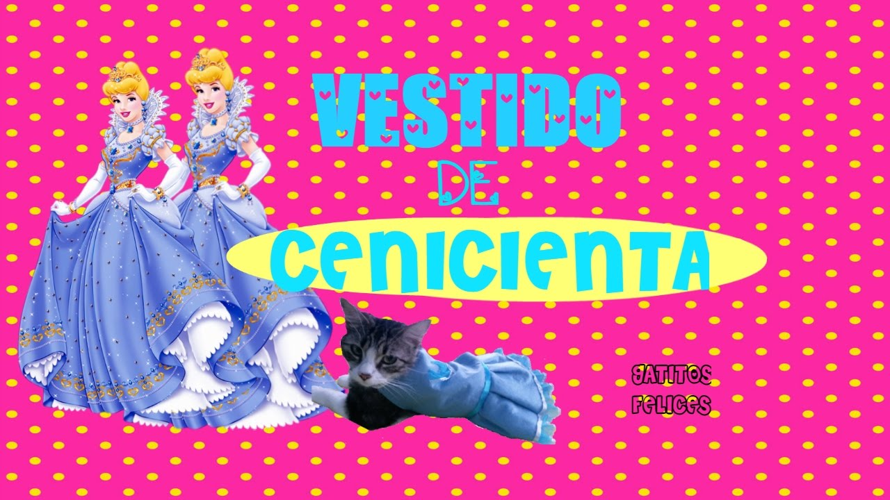 Vestido para Gatita || Princesa Disney Cenicienta - YouTube