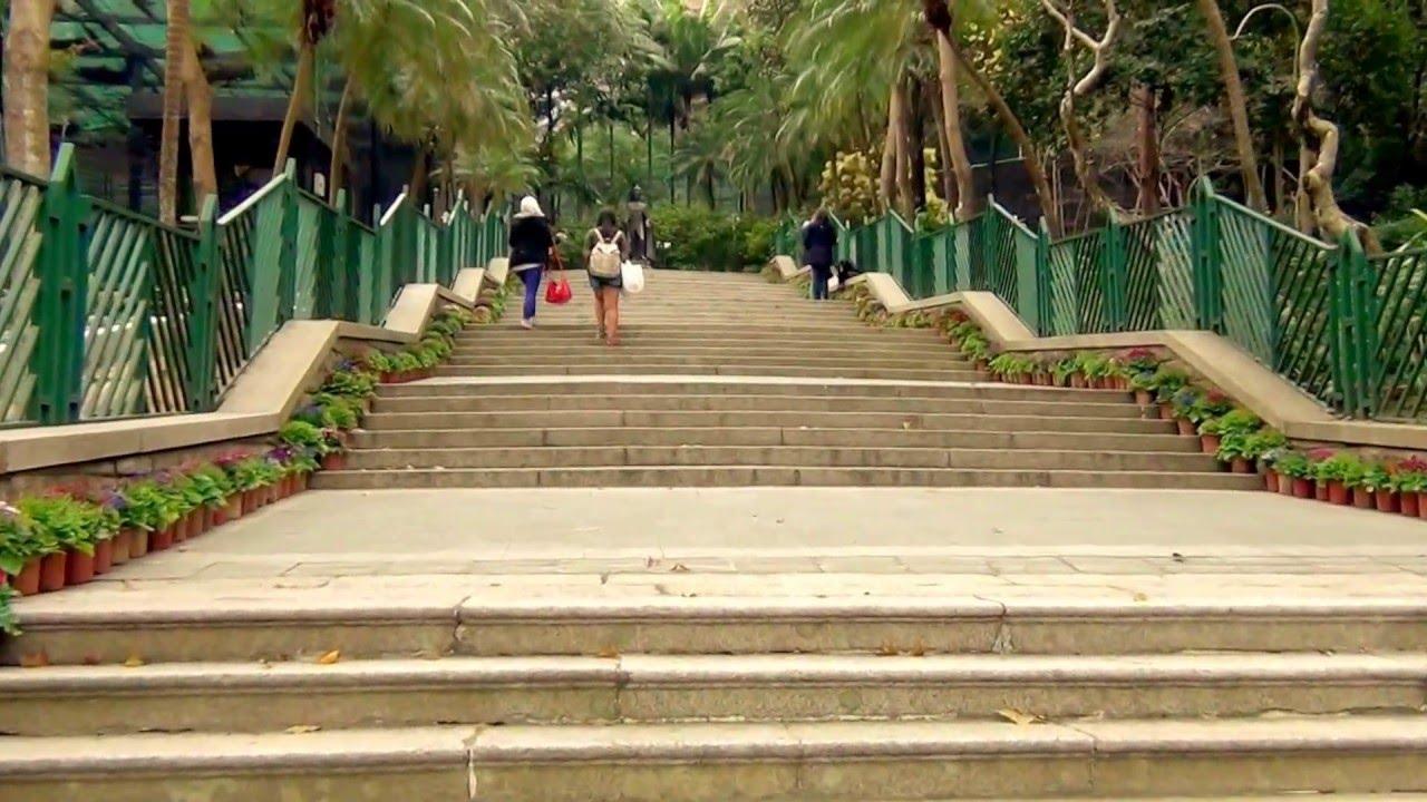 HONGKONG ZOOLOGICAL & BOTANICAL GARDENS 2016(JEAND82) - YouTube