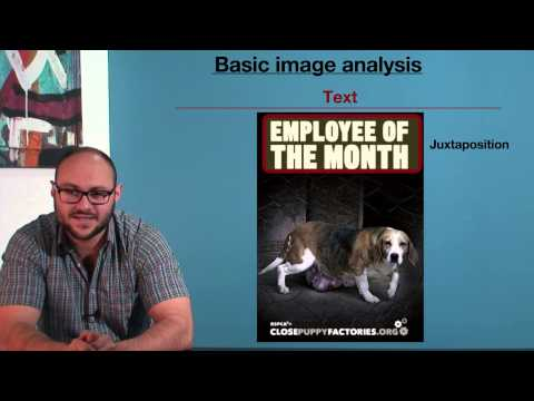 VCE English - Basic Image Analysis