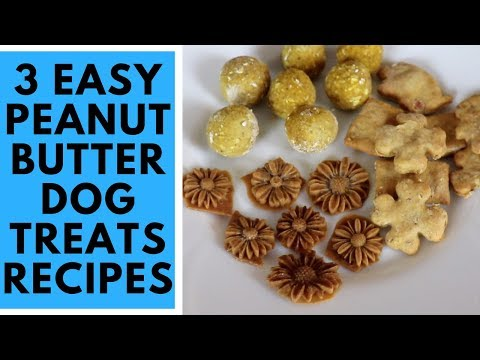 Peanut Butter Dog Treats Recipe - 3 Easy And Fast Recipes