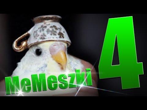 mEmICzNa IdEoLoGia   MeMeszki #4