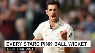 All 42 wickets taken by Mitch Starc in day-night Tests