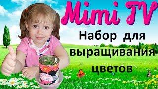 Милана сажает цветочки маргаритки. Выращиваем цветы в банке. Набор для выращивания цветов.