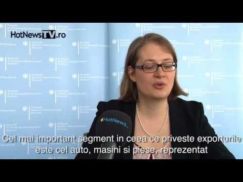 Diplomatii straini despre mediul economic din Romania [2]