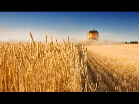 Аренда Земли. Инвестиции в Агросектор Украины - Программа Капитал - 04.04.15